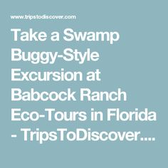 Take a Swamp Buggy-Style Excursion at Babcock Ranch Eco-Tours in Florida - TripsToDiscover.com