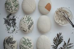 clay eggs with botanical impressions with yard plants