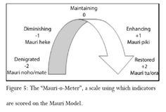 mauriometer - Google Search Sustainability, Letters, Google Search, Maori, Sustainable Development, Fonts, Letter