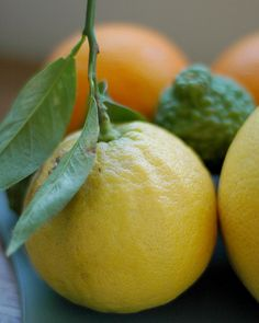 BERGAMOT. (member of the citrus family).  *Oil derived from: Unripe peel.  *Smell: Fresh, fruity, green, warm.  *Use: To flavor Tea (Earl Grey), sometimes culinary use. Used in skin care creams to cool and refresh, also to calm inflamed skin and psoriasis. Anitseptic. Tanning accelerator and sunscreen. Natural antioxidant. Supposed to be uplifting, anti-depressing, anti-anxiety and relaxing.