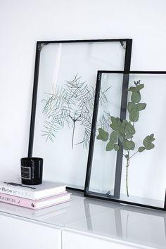 Garden & Home Blog A