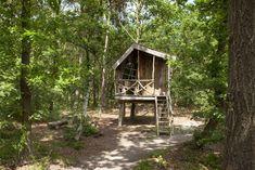 Een unieke ervaring en een wel hele stoere manier om de nacht door te brengen. Wie heeft er vroeger immers niet gedroomd van overnachten in je eigen boomhut? De boomhutten op Camping de Norgerberg kun je het beste vergelijken met een trekkershut. Maar dan hoog en droog tussen de takken. #origineelovernachten #reizen #origineel #overnachten #slapen #vakantie #opreis #accomodatie #travel #uniek #bijzonder #camping #slapen #hotel #bedandbreakfast #bos