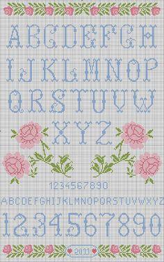 Shawkl: Free Rose Sampler