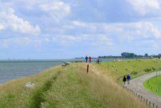 Afbeelding van http://www.noordhollandsdagblad.nl/stadstreek/waterland/article27305904.ece/6079e/ALTERNATES/w600/PX249_2E34_9.JPG.