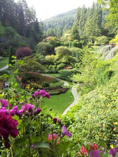 Butchart Garden, Victoria BC - I need to go to these gardens.  Top of the bucket list!