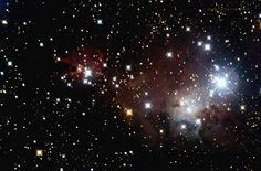 The Cone & Christmas Tree Cluster