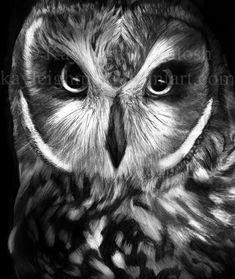 "Owl 9h-9b 20 hours 14""x17"" No stealin/using/editing Art © Kayleigh McIntosh"