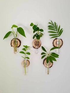 Room With Plants, House Plants Decor, Plant Decor, Hang Plants On Wall, Plants On Walls, Plants In Bedroom, Decoration Plante, Deco Floral, Indoor Plants