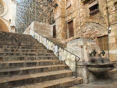 Ganxetes del Portia a Tarragona