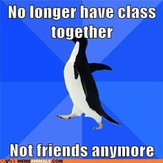 No longer have class together, not friends anymore. Socially Awkward Penguin #meme