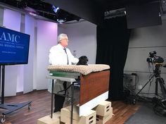 Our principal Amos The Yorkiepoo is with Dr. Carmichael of the Animal Medical Center @amcny talking about the importance of dental health care for pets. Tune in this morning! Some of the places where Amos will be beaming out between now and 1pm: Columbia SC (Fox) Cincinnati OH (WXIX/Fox) Lincoln NE (KHGI) Norfolk VA (WAVY/Fox) and St. Louis MO (KTVI/Fox). #amcmedicalcenter #petdentalhealthmonth #dogactors #amosthedog #yorkiepoosofinstagram