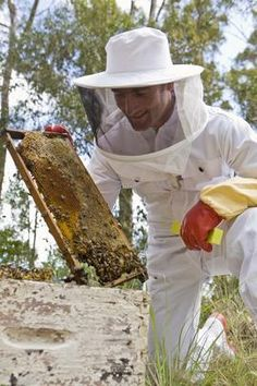 Start a beekeeping business with an agricultural or conservation grant.