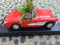 Succulents in a toy car Baby Succulents, Planting Succulents, Dish Garden, Corvette Convertible, Outdoor Gardens, Indoor Gardening, Toy Trucks, Dream Garden, Vintage Gifts