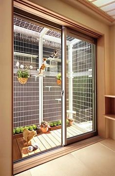 Simple, beautiful take on a cat enclosure for felines who crave a little (safe) fresh air. Porch enclosure for cats.