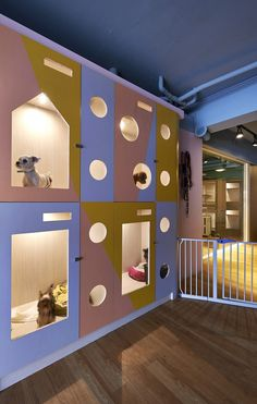 Image 2 of 10 from gallery of Petaholic Hotel / sms design. Courtesy of SMS Design - Gallery of Petaholic Hotel / sms design - 2 Animal Room, Hotel Gato, Cat Hotel, Dog Boarding Kennels, Pet Boarding, Dog Kennels, Dog Grooming Shop, Dog Grooming Salons, Dog Spa
