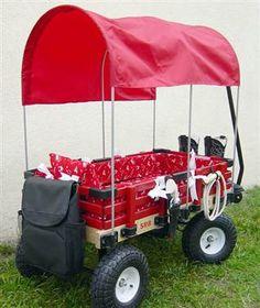 custom kids wagon | ... Flyer: Luxury kid wagons boast custom wheels, DVD players - TODAY.com
