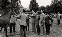 Concurso de ganado en Fadura, 1950 (Colección Archivo municipal) (ref. 00604)