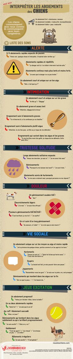 Pet Training - Infographie : Interpréter les aboiements des chiens - Nous les chiens This article help us to teach our dogs to bite just exactly the things that he needs to bite Animals And Pets, Funny Animals, Funny Pets, Education Canine, Dog Information, Cane Corso, Jack Russell Terrier, Big Dogs, Dog Care