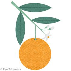 Ryo Takemasa on Behance Fruit Illustration, Graphic Illustration, Graphic Art, Ryo Takemasa, Flower Outline, Cartoon Wallpaper, Japanese Art, Design Elements, Deco