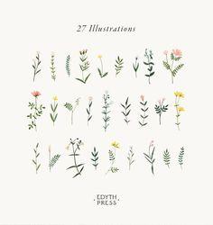 Botanical Clipart Wildflower Hand Drawn Floral Watercolor png flowers clip art illustrations plant flower sprig wedding floral elegant - #Art #Botanical #Clip #Clipart