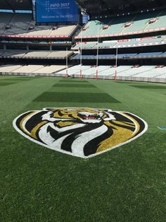Tigers logo painted on the ground.