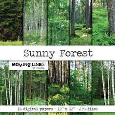 Sunny Forest Wallpaper Digital Background Digital by MovingLines, $3.90