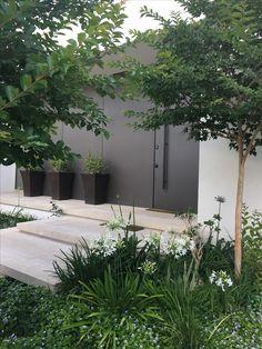 Garden Steps, Garden Paths, All About Plants, Modern Farmhouse Exterior, Outdoor Living, Outdoor Spaces, Garden Inspiration, Beautiful Gardens, Container Gardening