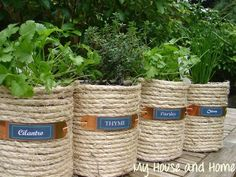 Twine wrapped cans turned into herb pots!!