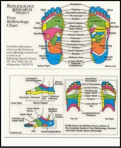 Ha, there's a spot in your foot that can make you pee. Look for the word bladder in the chart. :) Reflexology Foot Chart and Interactive Map