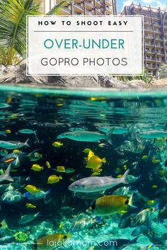 You don't need to be an expert photographer to take over-under or split water photos. You just need a dome and a GoPro. Fun for posting on Facebook and Instagram!