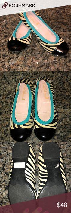 b27e419988e Pretty Ballerinas Zebra Print Calf Hair Flats Pretty Ballerinas Zebra Print  Calf Hair Flats with Teal