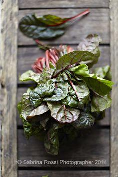 Beetroot Greens | Inside my Bag - Sabrina Rossi