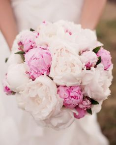 ...the little book of secrets...