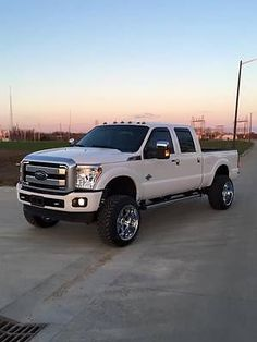CC's new truck coming next weekend!!! Love it!! 2015 Ford F-250 Super Duty Platinum Crew Cab Pickup 4-Door 6.7L LIFTED