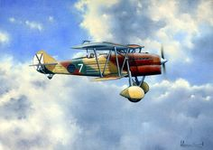 Worldwide recognize for his hundred aviation paintings sold to collectors living worldwide. Illustrated artworks for the Spanish Air Force. Spanish Air Force, Italian Air Force, Aircraft Painting, Airplane Art, Ww2 Planes, The Great, Aircraft Design, Aviation Art, Paint Schemes