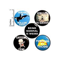 Funny Buttons Random Humor Positive Pins for Backpacks or Jackets Lapel Pins Badges Tacos Puns Coffee Humor 5 Pack Gift Set 1 Inch - Packed Gifts Work Jokes, Work Humor, Funny Buttons, Introvert Humor, Love Puns, Bee Gifts, Work Gifts, Cute Pins, Random Humor