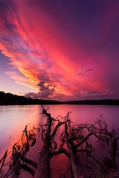 A lovely and kind of weird sunset yesterday over Narrabeen lakes on the…