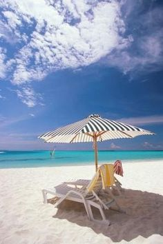 Enjoy the day at beautiful Vanderbild Beach, Naples, FL. I have done that a few times!