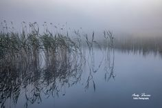 This stunning image of Ballynafagh Lake, was shot in the early morning (very early!) dew, when the lake was just starting to come to life. Framed or unframed copies of this print can be purchased from our website from just out the link below. Street Photography, Landscape Photography, Early Morning, Celtic, Ireland, Website, Link, Check, Prints