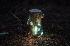 Meerjungfrau skaliert USB-Pilz-Lampe von ShroomInTheRoom auf Etsy