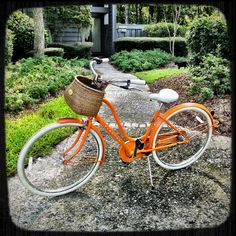 My new bike- even the basket is the same. So cute!