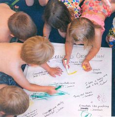 The children in Sunshine House in Loveland, CO take an active role in creating displays that reflect their daily wonderful active learning experiences. Learning Stories, Learning Activities, Creative Curriculum, Learning Process, Sunshine, Children, House, Creative Resume, Young Children