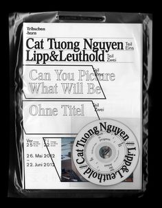 Publikation zur Ausstellung «Cat Tuong Nguyen, Lipp/Leuthold» im Pavillon Tribschenhorn, Luzern;Johnson / Kingston Ivan Weiss / Michael Kryenbühl
