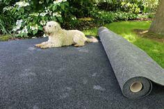 Woof Woof Carpet Colors, Garage, Animals, Carport Garage, Animales, Animaux, Garages, Animal, Animais