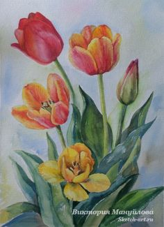 Ideas and Decor. пишем тюльпаны акварелью.