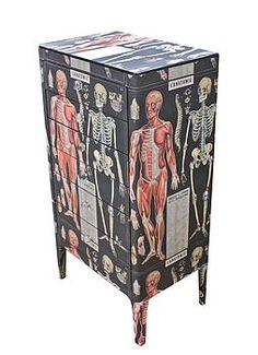 Anatomy Skeleton Chest Of Drawers . dark decor