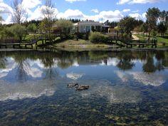 Parque Ambiental de Santa Catarina, Constância, Portugal (2012)