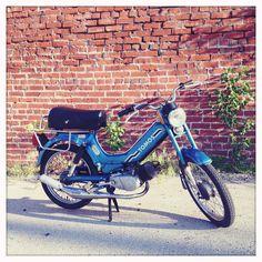 Brookyln's #LIL'CHOPZ - TOMO Moped