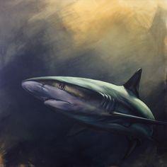 Original paintings by Aimée Rolin Hoover Wildlife Paintings, Animal Paintings, Oil Paintings, Canvas Mobile, Shark Painting, Shark Art, Reef Shark, A Level Art, Fish Art