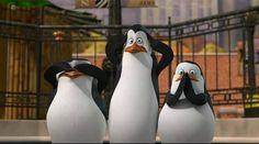 Madagascar penguins see no evil, hear no evil, or speak no evil.